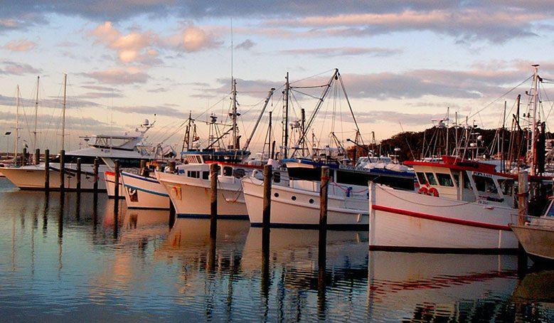 Ethical fishing